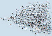 Crowd of people running forming heart shape, illustration