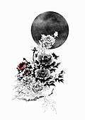 Rose bush extending towards dark moon, illustration