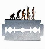 Sequence of human evolution along razor edge, illustration