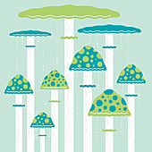 Assorted fungus on tall stems, illustration