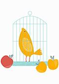 Fruit beside birdcage with singing bird inside, illustration