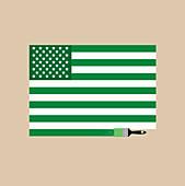Paintbrush painting American flag green, illustration