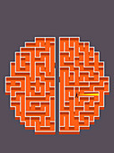 Businessman with torch lost in brain maze, illustration