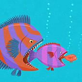 Fish food chain, illustration