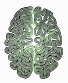 Labyrinth tangled road map brain, illustration
