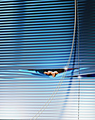 Fingers peeping out from venetian blinds, illustration