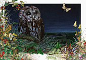 Tawny owl in foliage at night, illustration
