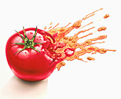 Juice squirting from squashed tomato, illustration