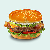 Cheeseburger, illustration