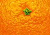 Orange peel, illustration