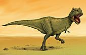 Fierce Tyrannosaurus Rex, illustration