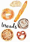 Different breads, illustration