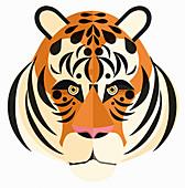 Tiger, illustration