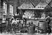 Leather tanning industry, 19th century
