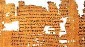Artemidorus papyrus