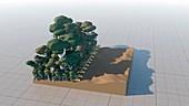Deforestation, conceptual illustration