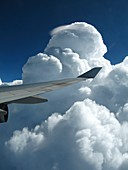 Pileus and cumulus congestus clouds