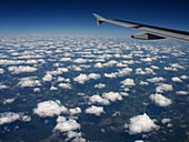 Cumulus humilis clouds seen from an aircraft