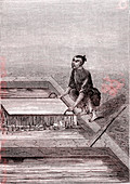 Bamboo paper manufacturing in China, 3rd century BC