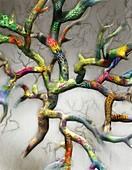 Evolution and tree of life, conceptual image