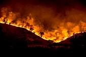California wildfire, November 2018