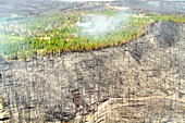 Wyoming wildfire aftermath, August 2016