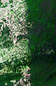 Deforestation in Central America, satellite image