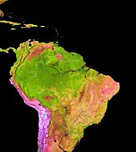 Land cover in and around the Amazon, 2018