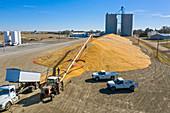 Corn farming, Nebraska, USA