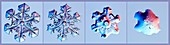 Snowflake melt sequence, light micrographs