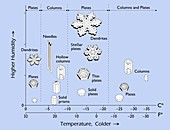 Snowflake morphology, diagram