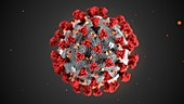 Covid-19 coronavirus particle, illustration