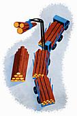 Logging truck,illustration