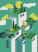 Green rooves,illustration