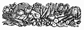 Engraving of fresh fruit and vegetables