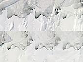 Antarctic ice shelf calving sequence,September 2019