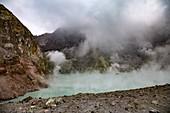 Whakaari volcano geothermal area,New Zealand