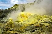 Whakaari volcano sulphur deposits,New Zealand