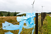 Plastic rubbish caught on fence