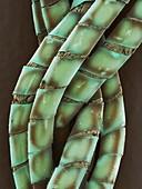 Braided copper foil,SEM