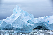 Melting sea ice and icebergs