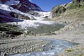 Recession of small glacier