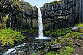 Waterfall and basalt columns