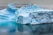 Icebergs in Nordvestfjord,Greenland