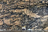 Migmatite rock cliff,East Greenland