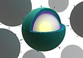 Drug delivery microbubbles,illustration