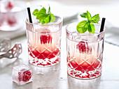 Rhubarb drinks with raspberries