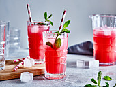 Rhubarb juice with mint and ice cubes