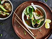 Wan-Tan-Suppe mit Paksoi (Asien)