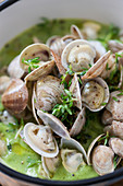 Clams in courgette cream
